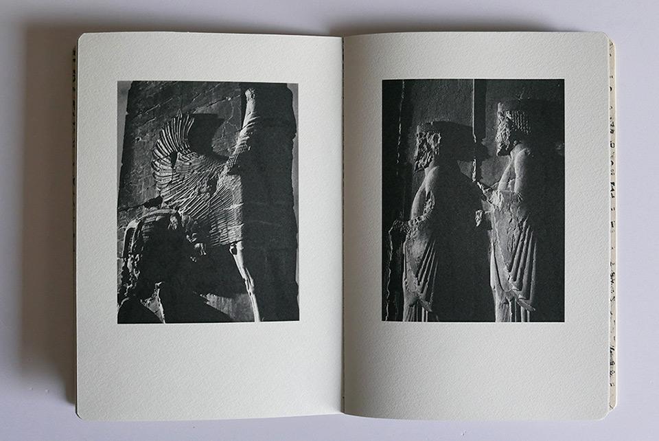 Luciano Zuccaccia | Persepolis