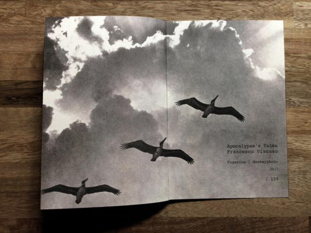 Francesco Viscuso | Apocalypse's Tales | Fugazine & Monkeyphoto